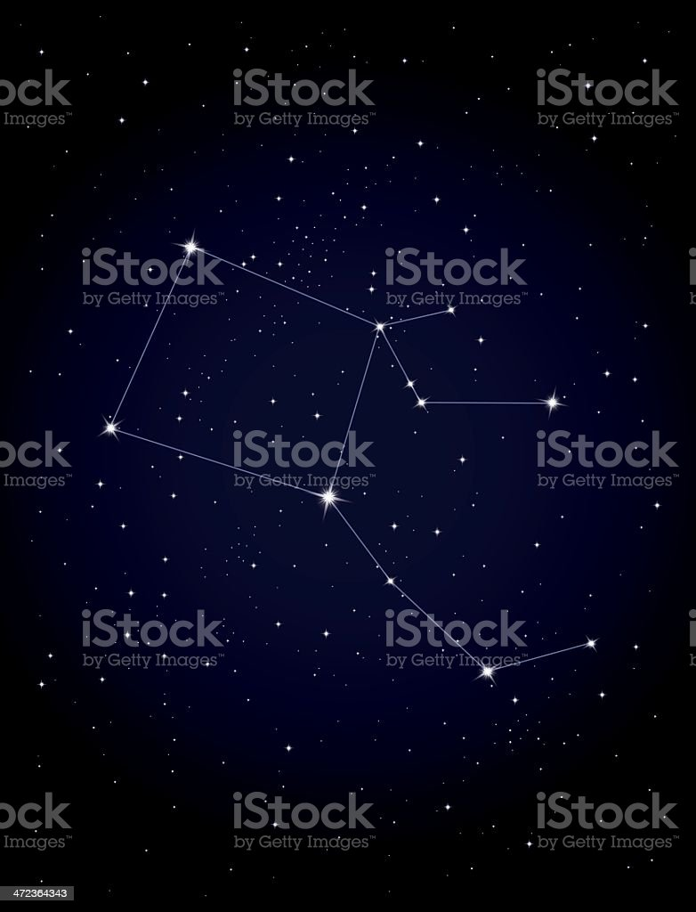 Constellation Pegasus royalty-free constellation pegasus stock vector art & more images of astrology