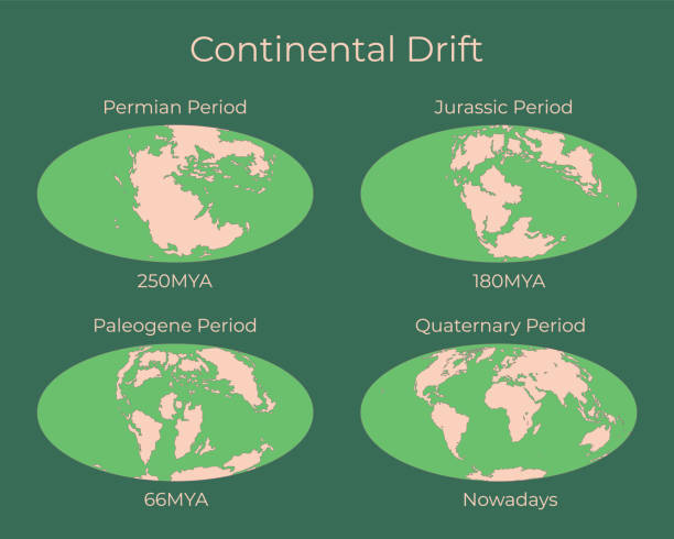 Continental drift and changes of Earth map. Colorful vector illustration of Worldmap at Permian, Jurassic, Paleogen and Quartenary periods isolated on background. Continental drift and changes of Earth map. Colorful vector illustration of Worldmap at Permian, Jurassic, Paleogen and Quartenary periods isolated on background. snowdrift stock illustrations
