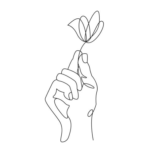 ciągły rysunek linii. ręka trzymająca kwiat. ilustracja wektorowa - lineart stock illustrations