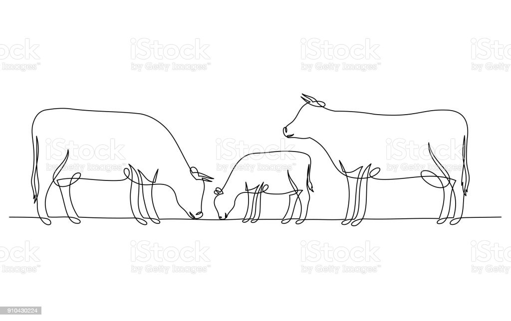 Continuous line drawing of cow and calf vector art illustration