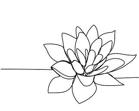 Continuous line drawing of  lotus. The concept of beauty and nature, love. Ecology of aquatic plants. Water lily flower hand drawn design outline sketch. Vector illustration.