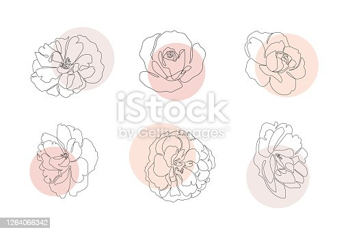 istock Continuous line flowers set with abstract circles. Trendy single line botanical illustration for print or web. Rose outline vector 1264066342