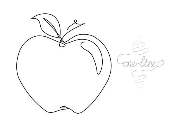 illustrazioni stock, clip art, cartoni animati e icone di tendenza di continuous one line art drawing of apple - mela