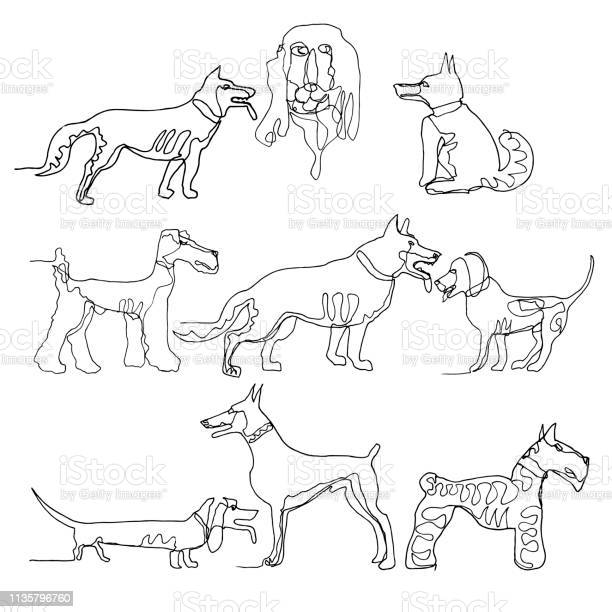 Continuous one line drawing dogs minimalism style vector ink for vector id1135796760?b=1&k=6&m=1135796760&s=612x612&h=i0otles 2pb1ydpieoufcwil2rdohrbb8iziv5kltm8=