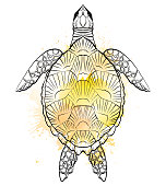 Contour black and white illustration of turtle with yellow watercolor splashes. The object is separate from the background. Linear illustration for printing on T-shirts, covers, sketches of tattoos and your design.