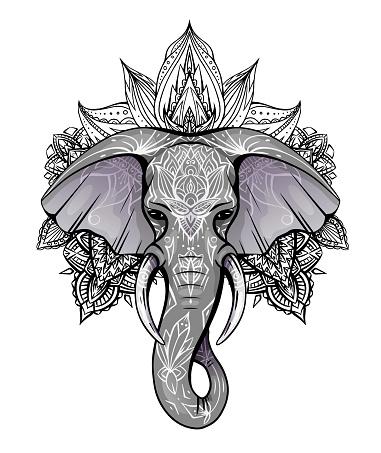 Contour color native elephant head with trunk, tusks and boho ornaments. Ganesha head with mandala. Vector silhouette