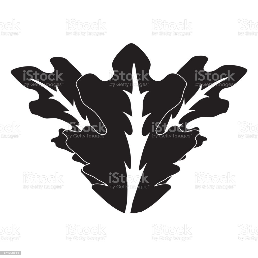contour delicious leaves lettuce organ food royalty-free contour delicious leaves lettuce organ food stock vector art & more images of agriculture