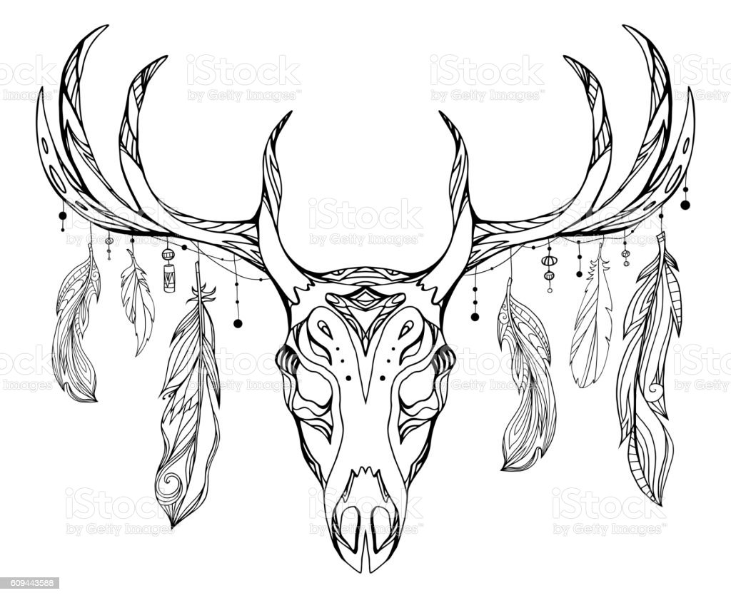 Contour Illustration Of A Deer Skull With Antlers And Feathers Stock ...