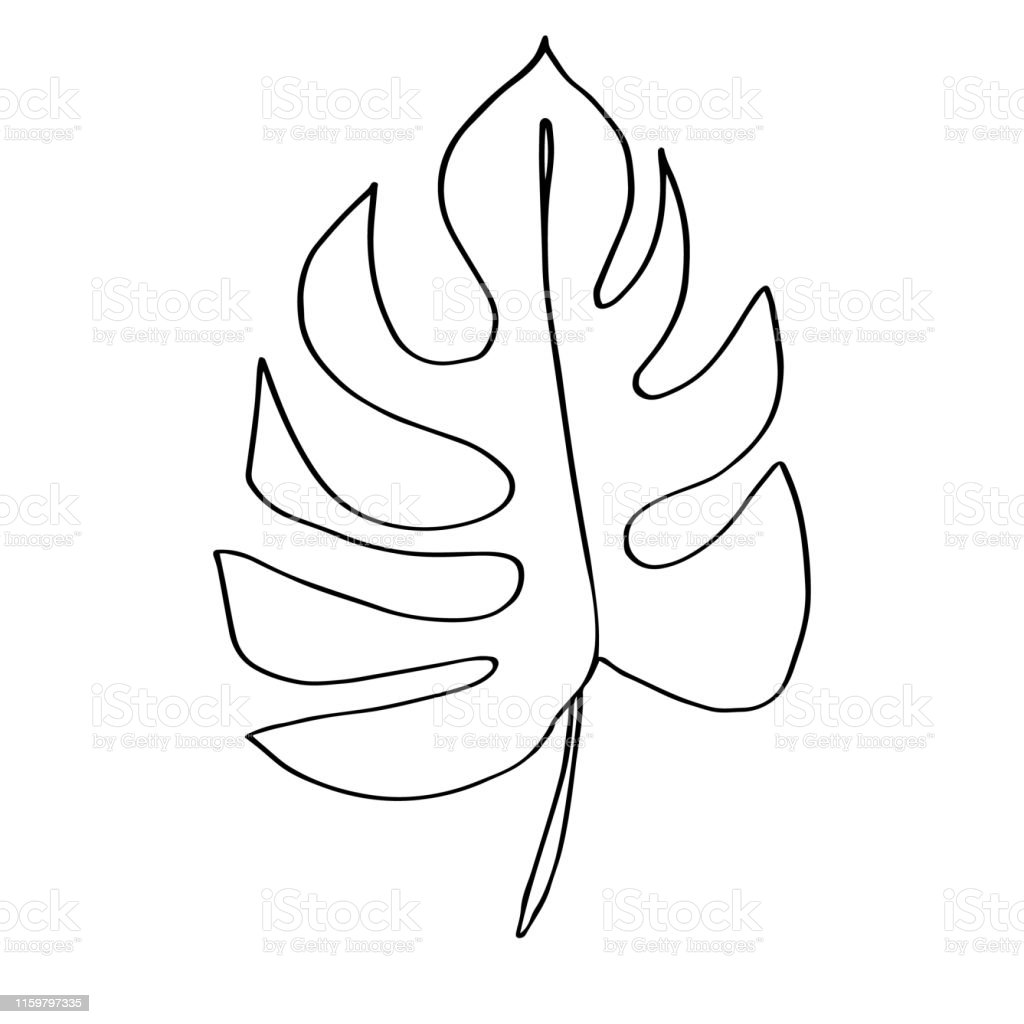 Contour Line Drawing Leaf Of Monstera Modern Minimalism Art Aesthetic Contour Pastel Scandinavian Color Palette Stock Illustration Download Image Now Istock