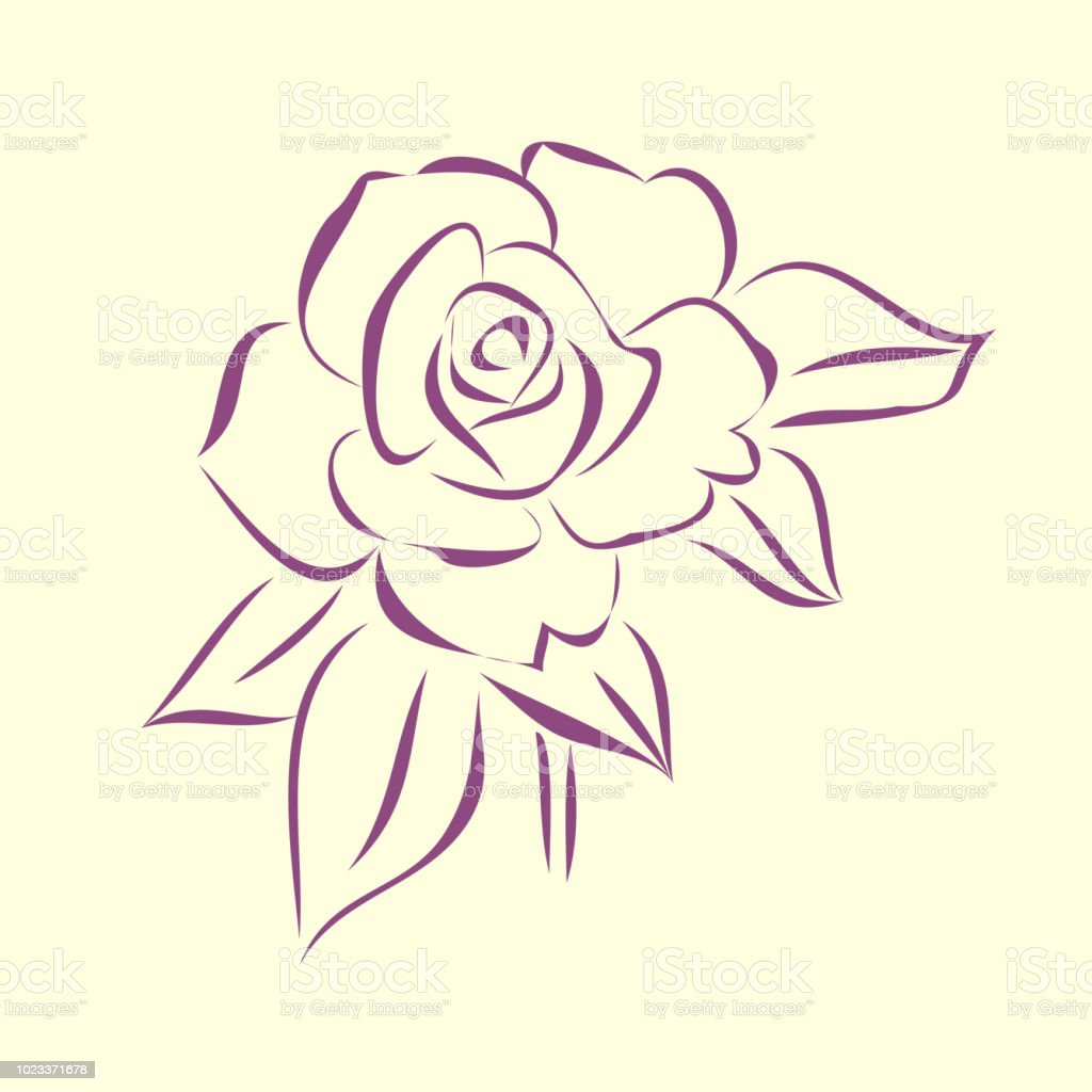 Contour Rose Flower Black And White Doodle Line Art Style Simple