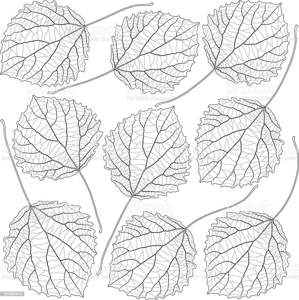 contoured aspen leaves vector art illustration