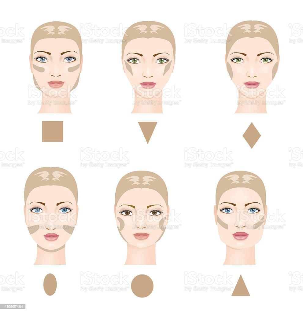 Contouring the face. Vector vector art illustration