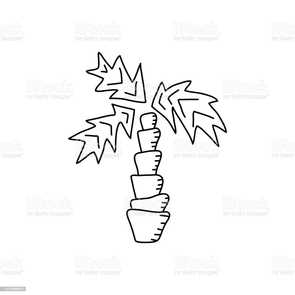 Contours Of Palm Trees Handdrawn Coloring Book Antistress Coloring Pages For Children Vector Illustration Stock Illustration Download Image Now Istock