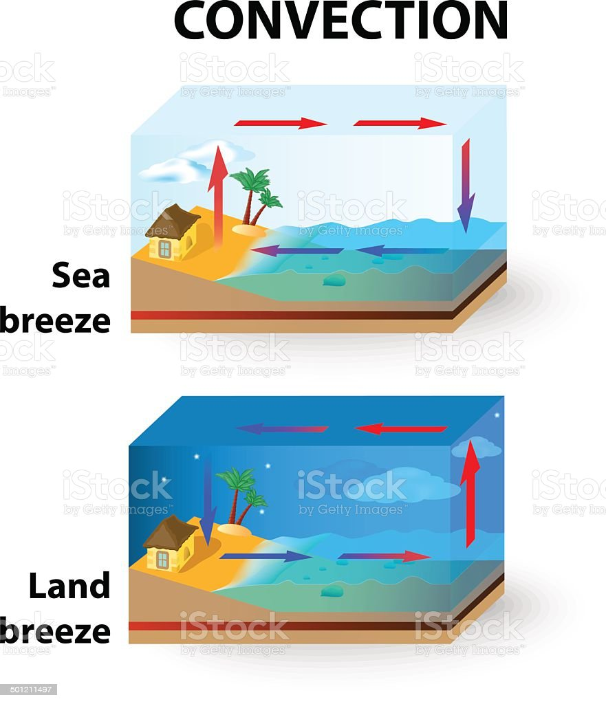 Convection. Land Breeze and Sea Breeze vector art illustration