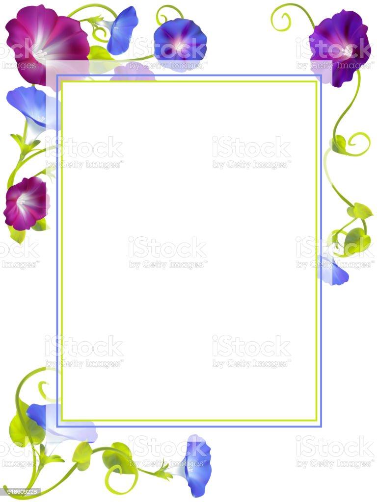 ヒルガオ青い花フレーム花の背景おめでとう春のイラスト ひらめきの
