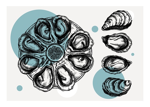 Cooked oysters on plate collage