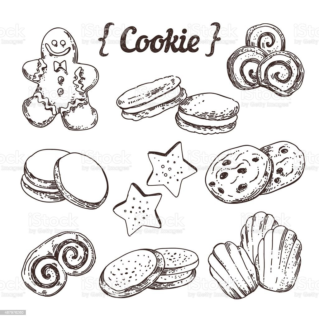 Cookie and sweet pastry hand sketched illustration vector vector art illustration