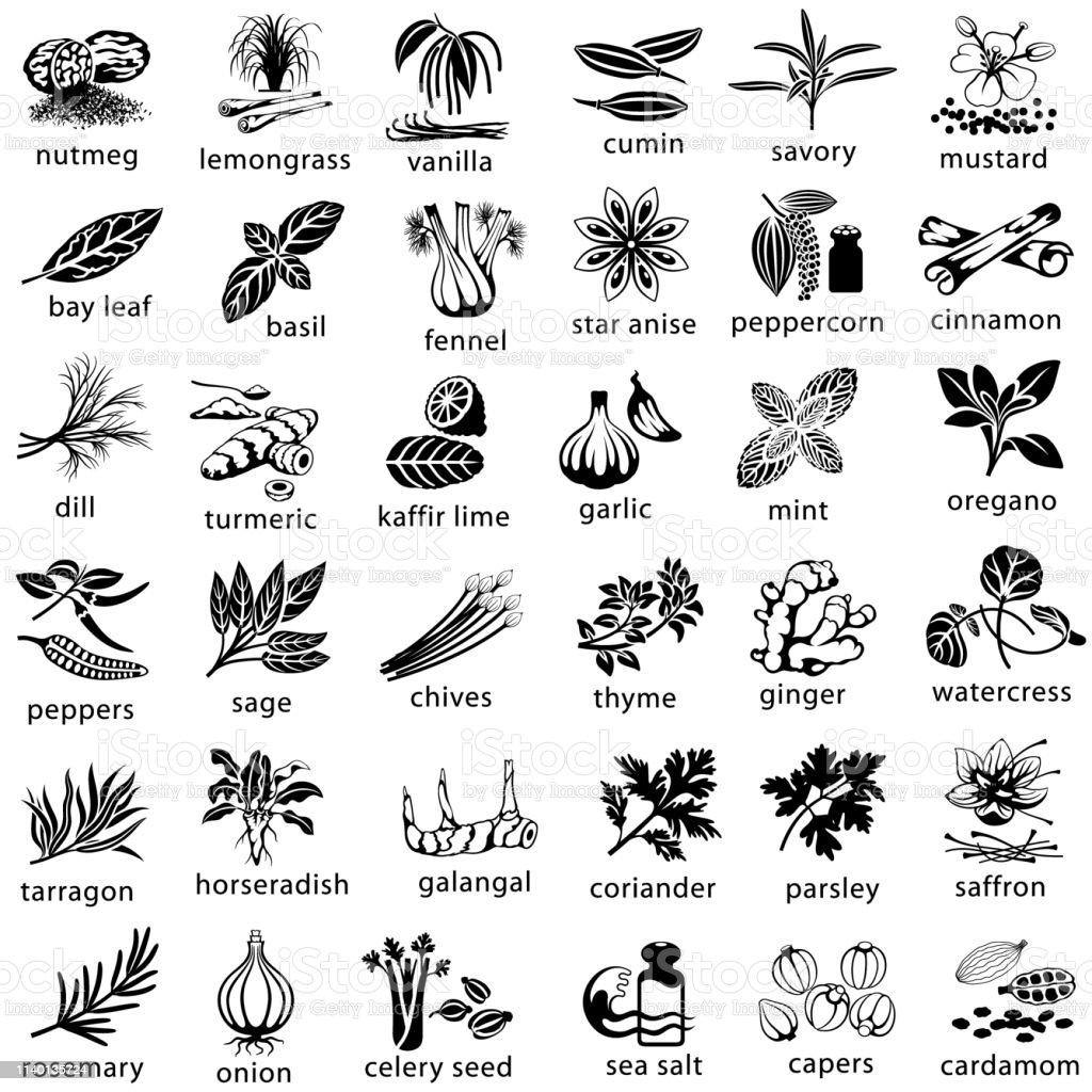 Cooking Herbs and Spices Icons Icon set of herbs and spices commonly used in cooking. Single color. Isolated. Basil stock vector