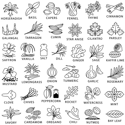 Cooking Herbs, Spices and Seasoning Outline Icons