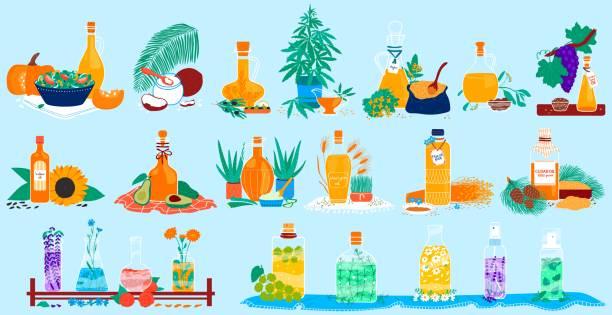 ilustrações de stock, clip art, desenhos animados e ícones de cooking oil sorts application, natural kinds of edible vegetable food oils with origin product vector illustration set. - palm oil bottles