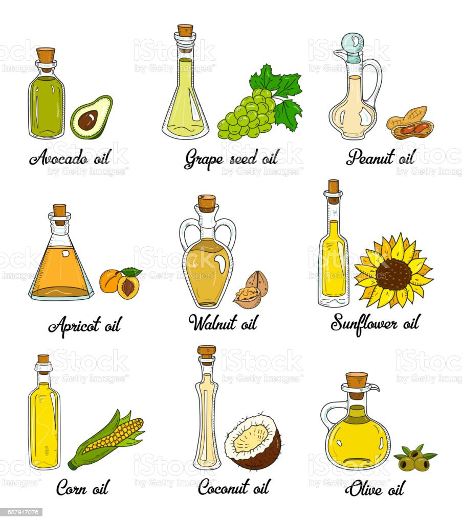9 cooking oils in cute sketchy bottles vector art illustration