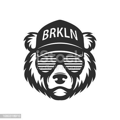 Cool bear in sunglasses