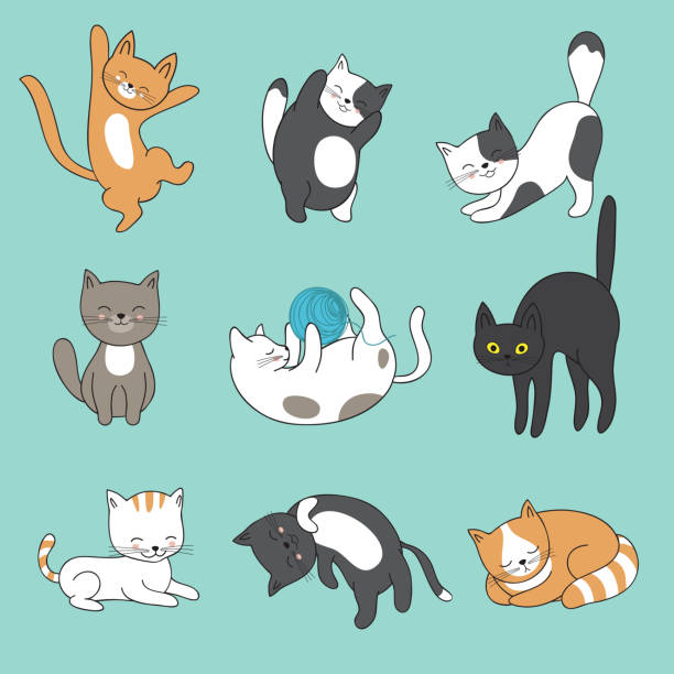 cool doodle abstract cats vector characters. hand drawn cartoon kittens - cat stock illustrations, clip art, cartoons, & icons