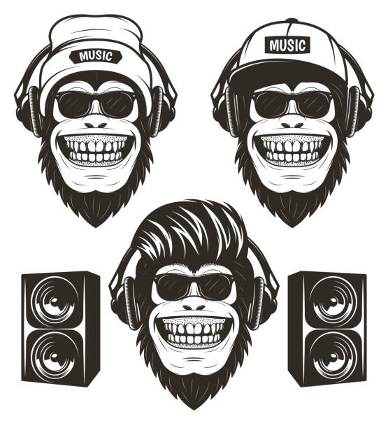 Cool hip hop music monkey set, vector hand drawn illustration Cool hip hop music monkey set, vector graphics for t-shirt, etc. Funny hand drawn monkeys in sunglasses and with headphones wearing hat and cap listening to music, loudspeakers. primate stock illustrations
