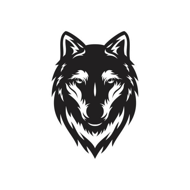 illustrazioni stock, clip art, cartoni animati e icone di tendenza di cool husky wolf head logo symbol vector illustration for t-shirt - lupo