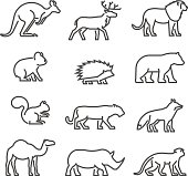 Cool line icons wild animals