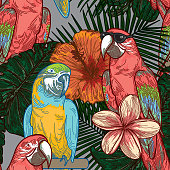 Just some super cool parrots sitting in the branches of some flowering tropical trees.