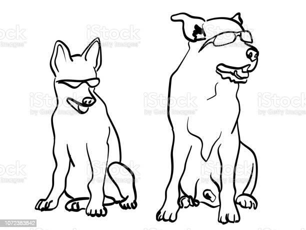Coolest dogs on the block vector id1072383842?b=1&k=6&m=1072383842&s=612x612&h=yjqyvqzl7iiytjibtjky8xjjkgyxvu 3lr2mx5bwu7k=