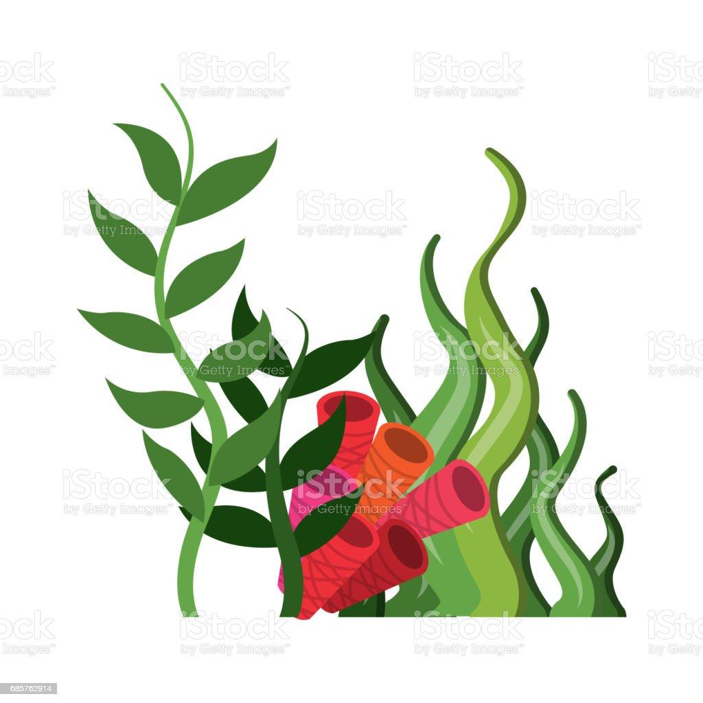 coral and algae icon. Sea life design. Vector graphic coral and algae icon sea life design vector graphic - immagini vettoriali stock e altre immagini di acqua royalty-free