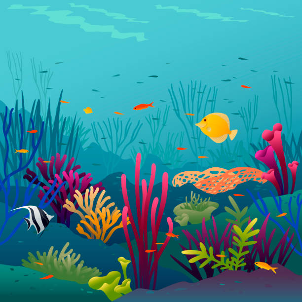Coral fish Coral fish underwater background. undersea stock illustrations