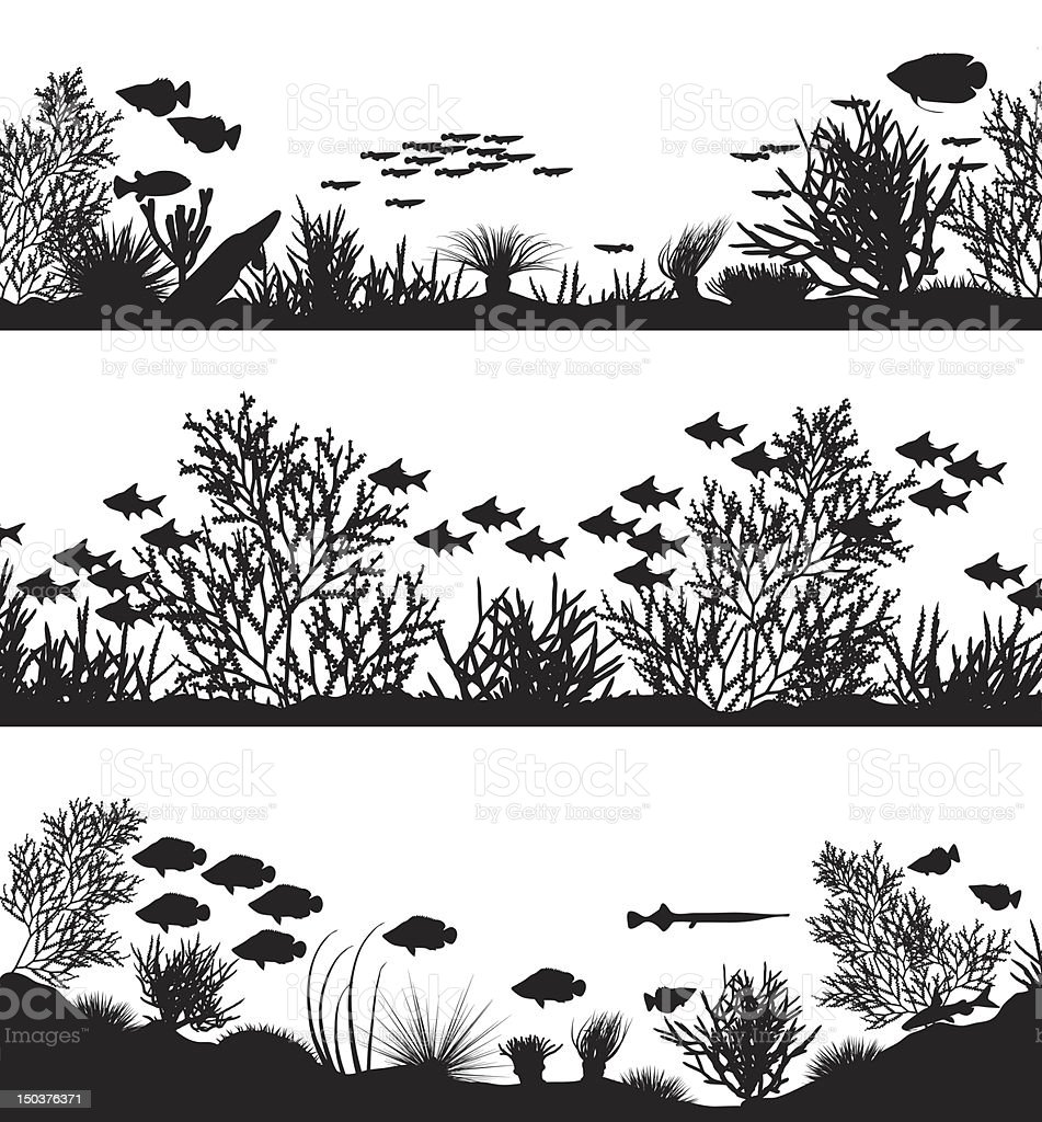 Coral foregrounds vector art illustration