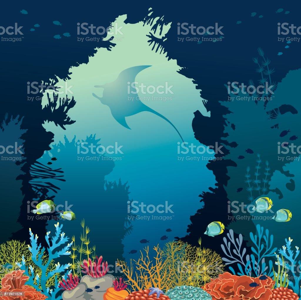 Coral Reef And Manta Underwater Vector Stock Vector Art