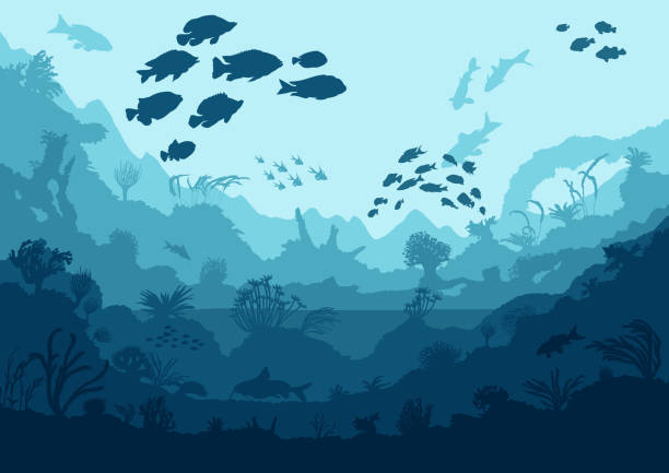 coral reef and sea creatures - unterwasseraufnahme stock-grafiken, -clipart, -cartoons und -symbole
