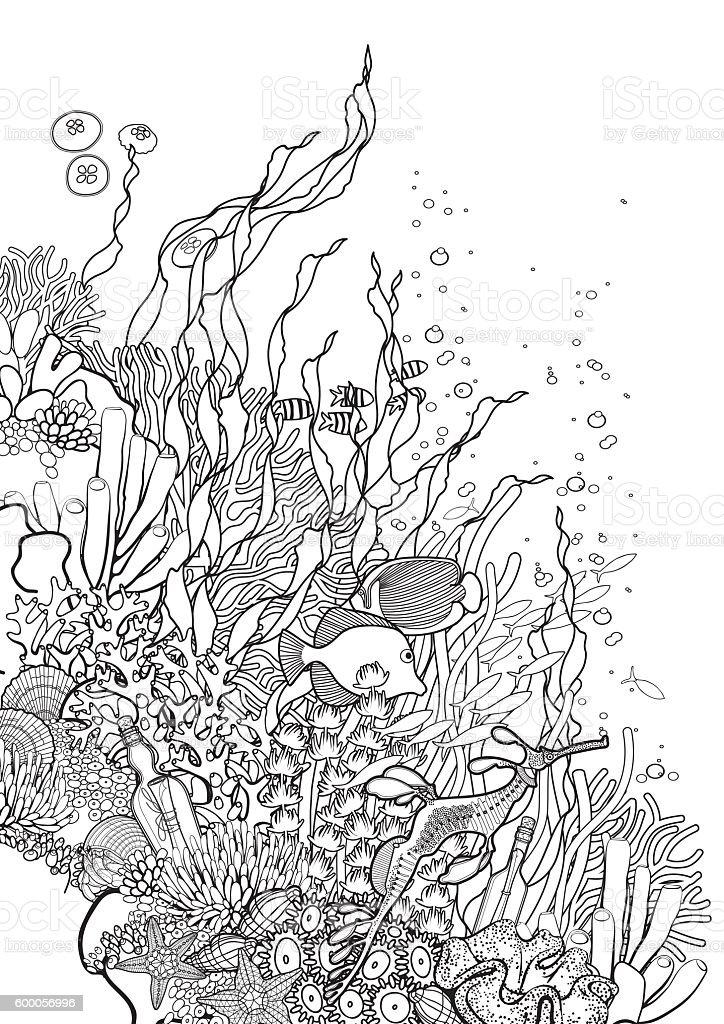 산호색 산호초 디자인식 벡터 아트 일러스트