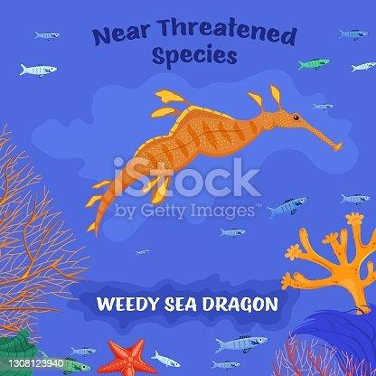 istock Coral reef inhabitants. Endangered fish species concept 1308123940