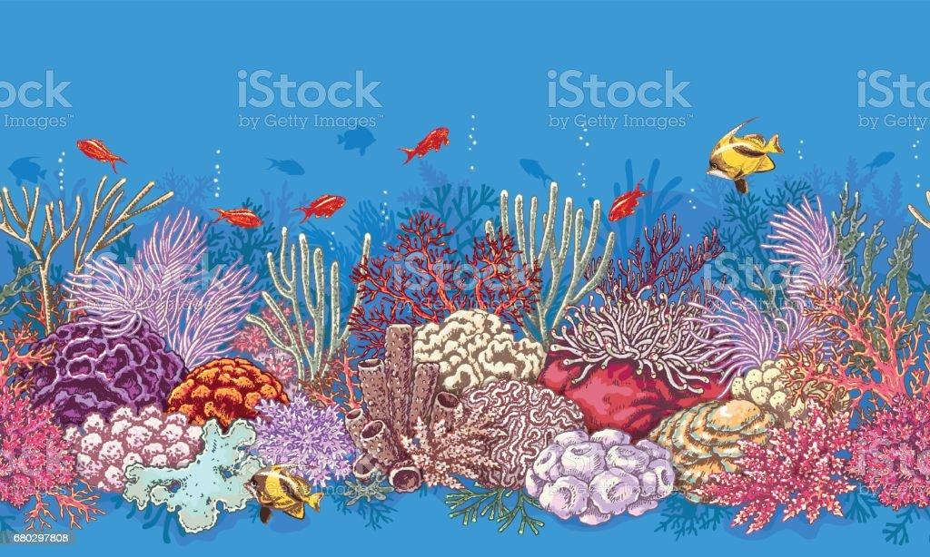 Ilustración de Patrón De La Línea De Arrecifes De Coral y más banco ...
