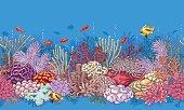 Coral Reef  Line Pattern