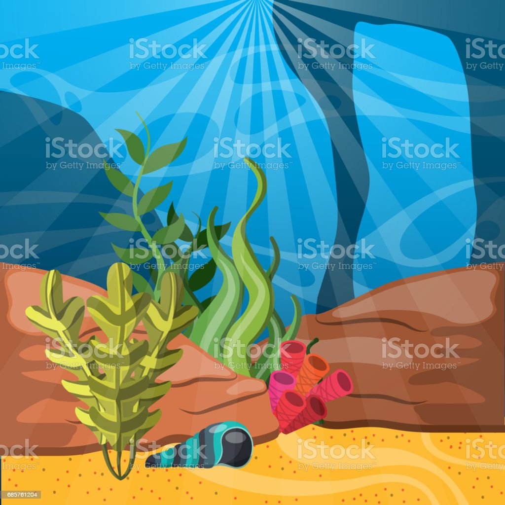 coral, shell and algae icon. Sea life design. Vector graphic coral shell and algae icon sea life design vector graphic - immagini vettoriali stock e altre immagini di acqua royalty-free