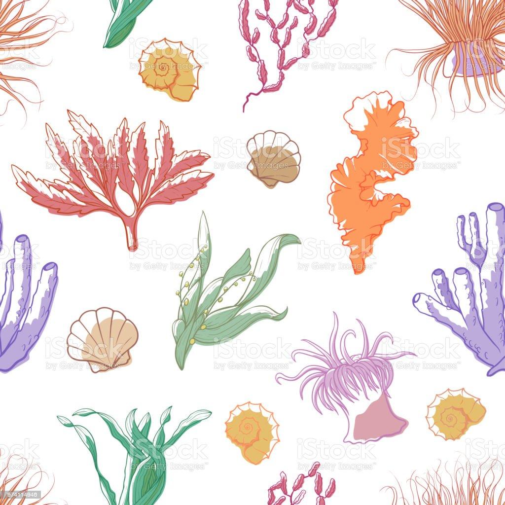 Korallen Und Algen Muster Stock Vektor Art Und Mehr Bilder Von