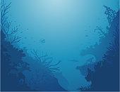 Corals Background / Les profondeurs de la mer