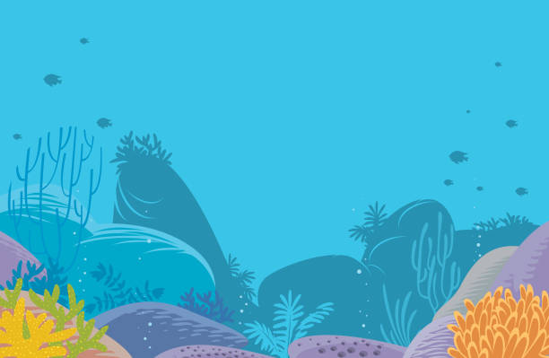 Corals Background Vector Corals Background undersea stock illustrations