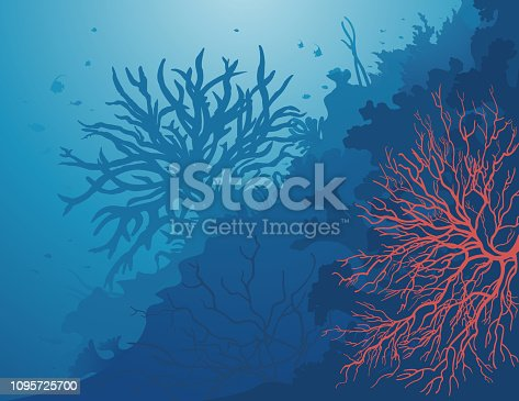 Red coral on a deep blue sea background. Corail rouge qui déploie ses branches à travers les mers profondes.