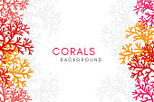 Corals reef background with vertical borders. Vector banner with underwater aquarium decoration elements.