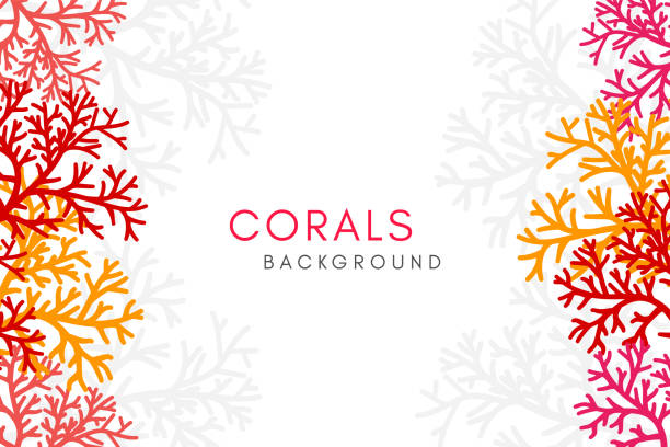 Corals reef background with vertical borders. Vector banner with underwater aquarium decoration elements. Corals reef background with vertical borders. Vector banner with underwater aquarium decoration elements. coral colored stock illustrations