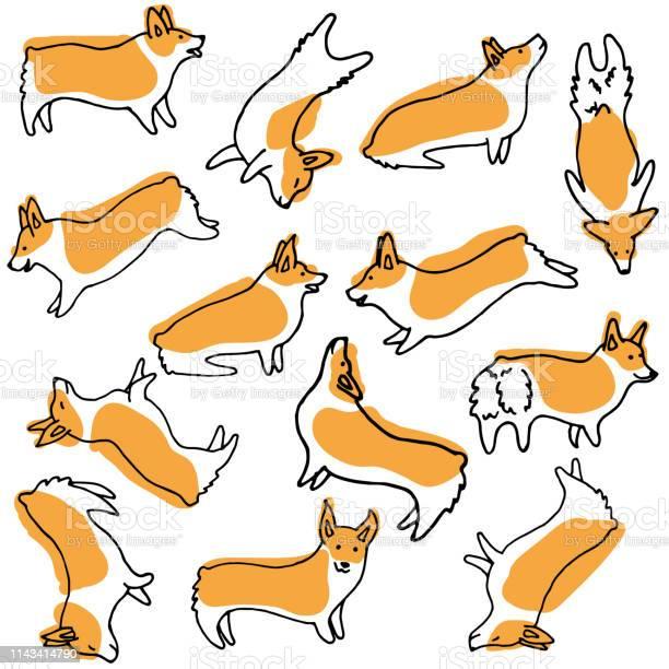 Corgi dog doodle set vector vector id1143414790?b=1&k=6&m=1143414790&s=612x612&h=7lapxt3vib4yssxnce0rbhal3ekzg5otsf5hccmerio=