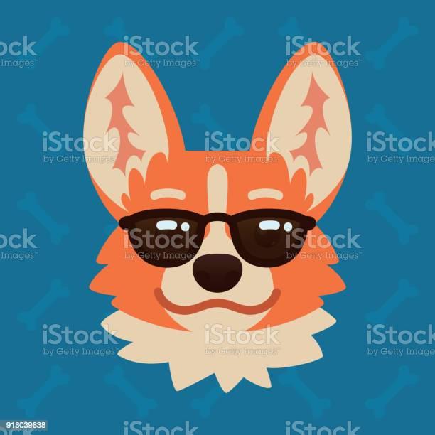 Corgi dog emotional head in sunglasses vector illustration of cute vector id918039638?b=1&k=6&m=918039638&s=612x612&h=wdsighcowysy3ipaebu75bxhilxsf6sp4jmnfooex2e=